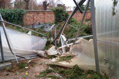 Stark beschädigtes Gewächshaus
