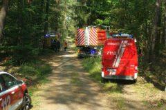 Einsatzfahrzeuge in Waldschneise