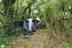 Defektes Fahrzeug im Gebüsch