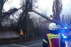 Orkan Sabine - Arbeiten aus Drehleiter in Ketteler Straße