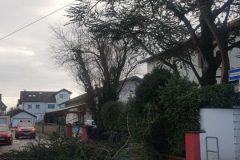 Orkan Sabine - Unterstützung der Feuerwehr Groß-Zimmern