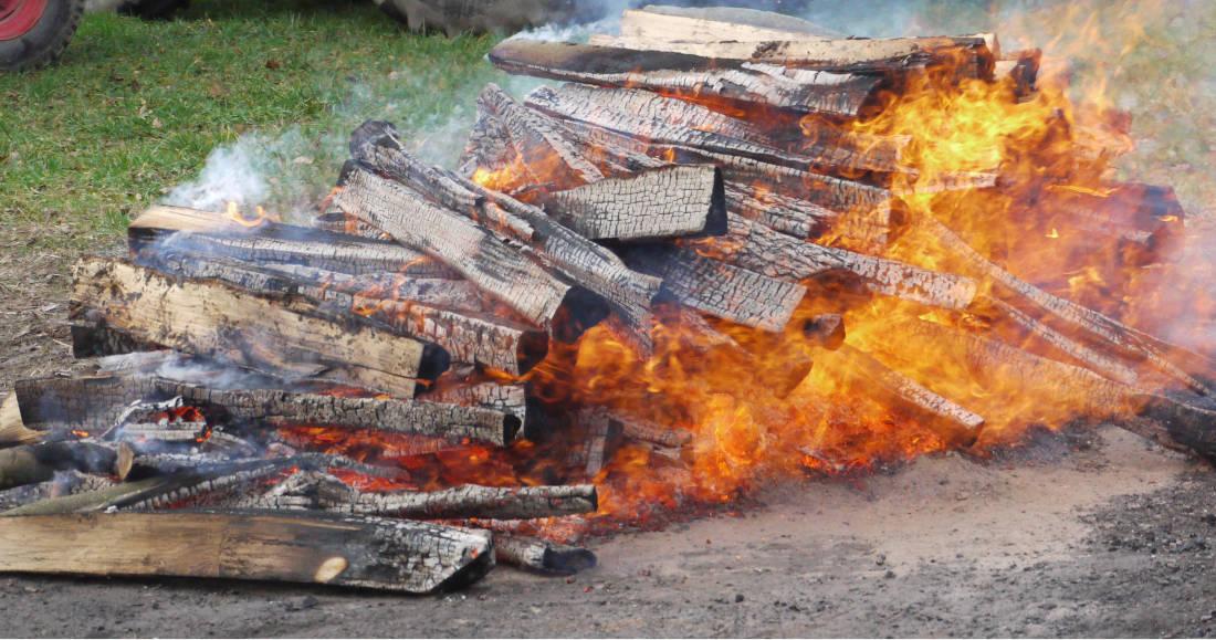 Feuer Lakefleisch 2020